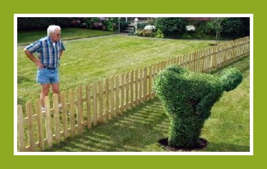 Picture jokes, Lawnmower, email joke picture, funny joke picture, really funny picture jokes