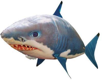 SHARK!! HELP!!