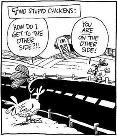 Crossing The Road: A Collection of Chicken Jokes