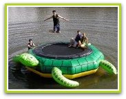 Turtle Water Trampoline and Turtle Water Bouncer